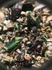 Restes de Cétoine dorée dans une pelote de réjection d'un goéland (cliché : Guillaume Debout) []